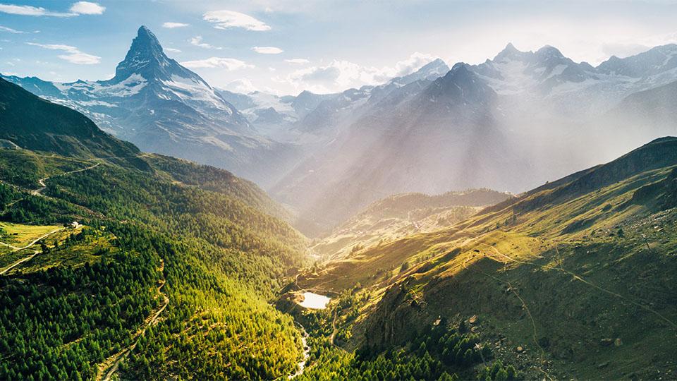 Swiss biohealth vital